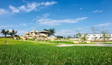 浙江召开农机装备创新发展与协同创新工作座谈会